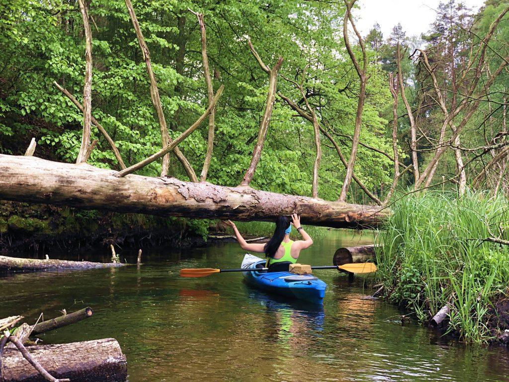 4 rzeki Pojezierza Augustowskiego spływ kajakowy Komfort SZOT