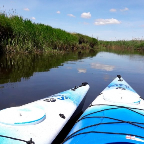 Biebrza – 1-day kayaking trip